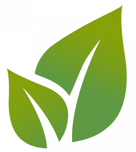 eko-evtovagonka